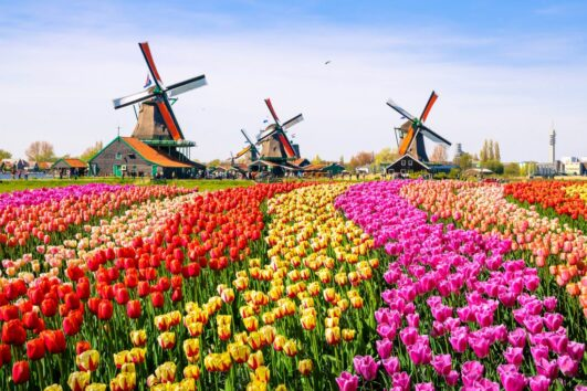 Netherlands Soccer Tour - Friendly