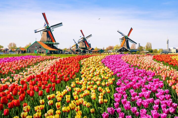 Netherlands Soccer Tour - Friendly