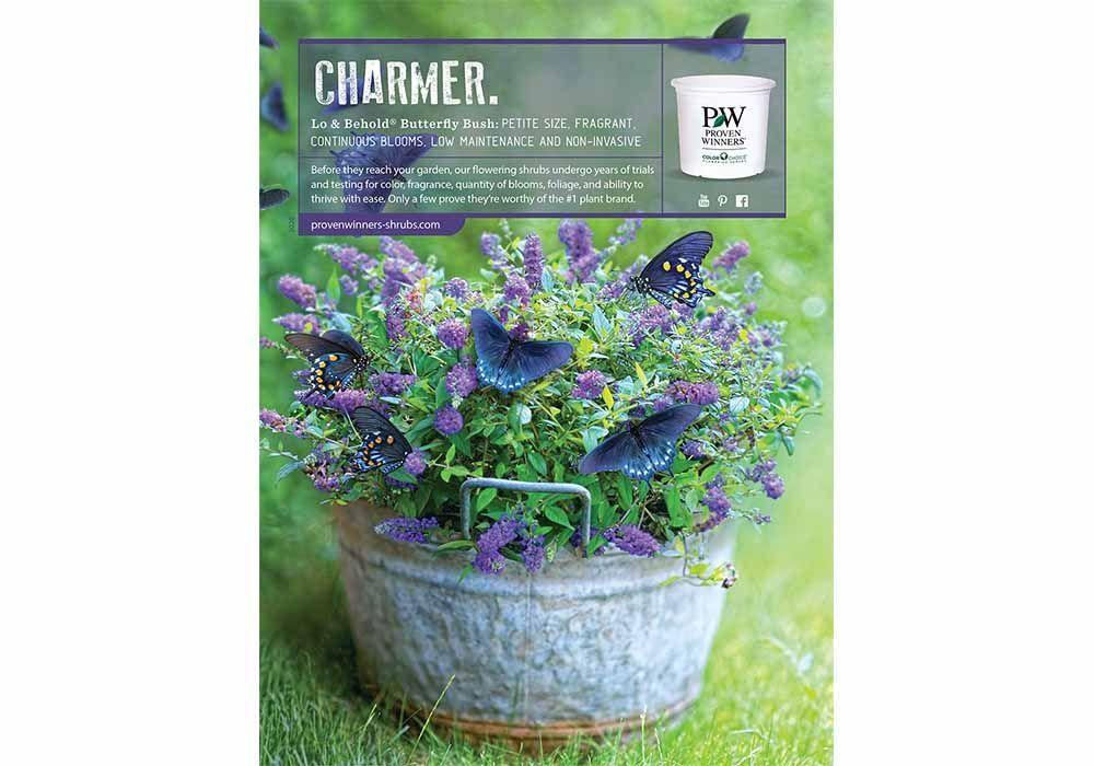 Charmer_TexasGardener_2020
