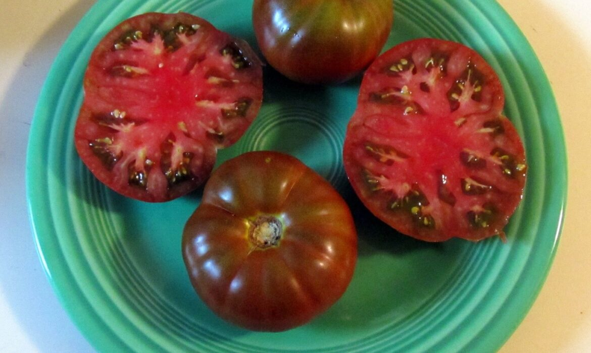 2020 Tomato Results - Big Mama Not So Hot, Others Promising