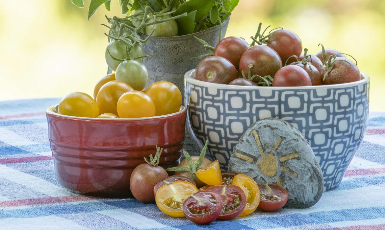 Cherry Tomatoes - Tiny Titans of Taste