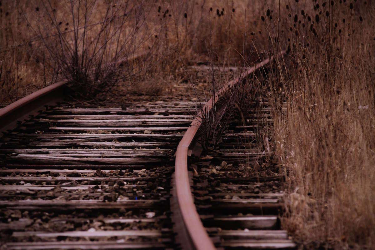 weeds overgrown on railroad tracks