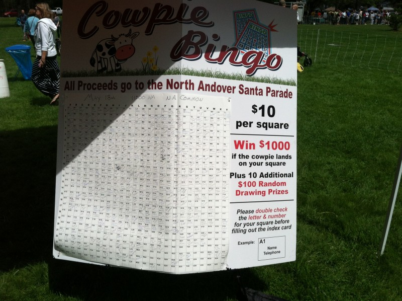 Cowpie Bingo at the North Andover Sheep Shearing Festival