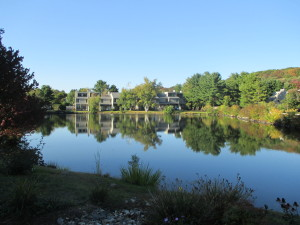 Millpond Townhouses Pond View