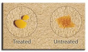 treatedcarpet
