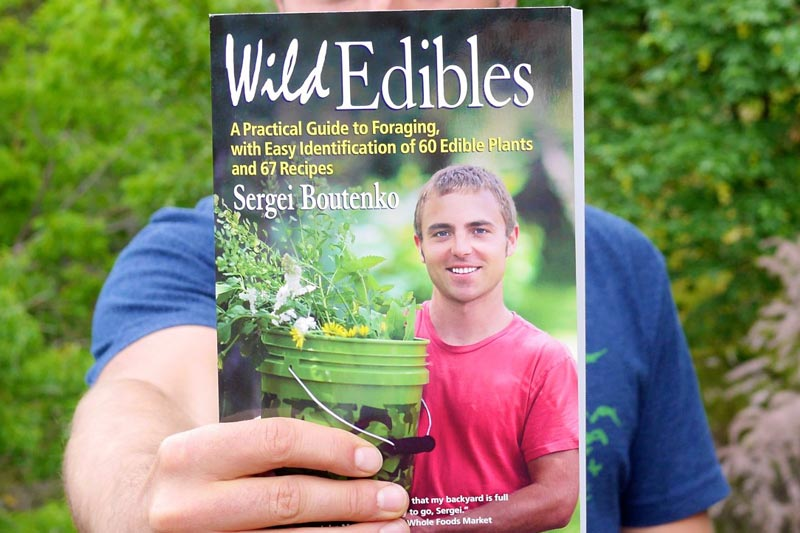 My wild edibles book is out!