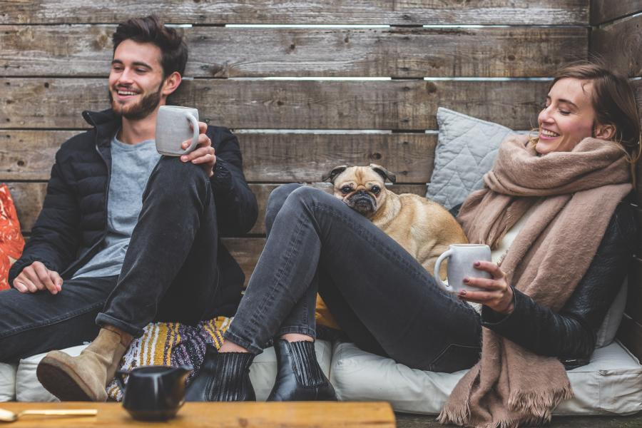 Travel with Pet | Everything you need to know