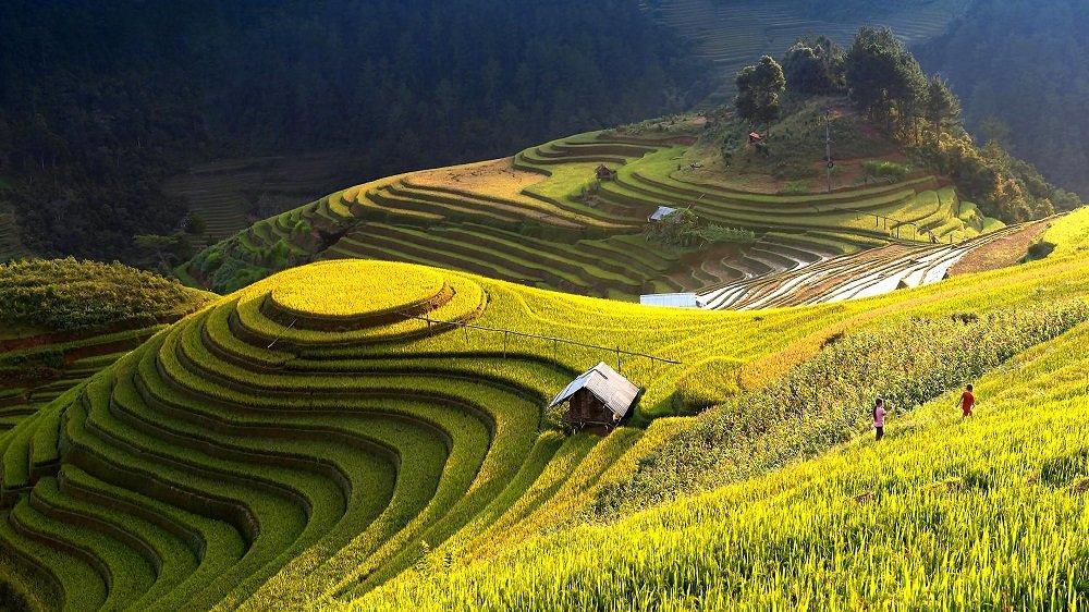 Tay Ninh Best Tour Place