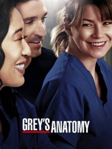 Grey's Anatomy is on the High Five Events binge-worthy show recommendation list.