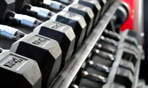 Opal Nutrients Weight Lifting