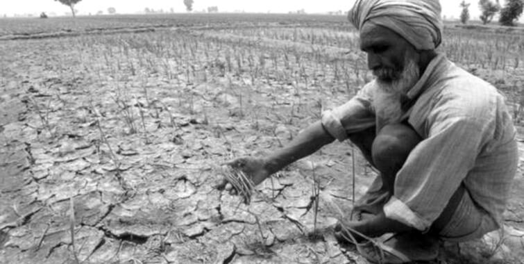Punjab Farmer Project