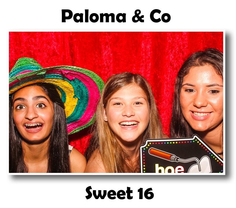paloma & Co 4.25