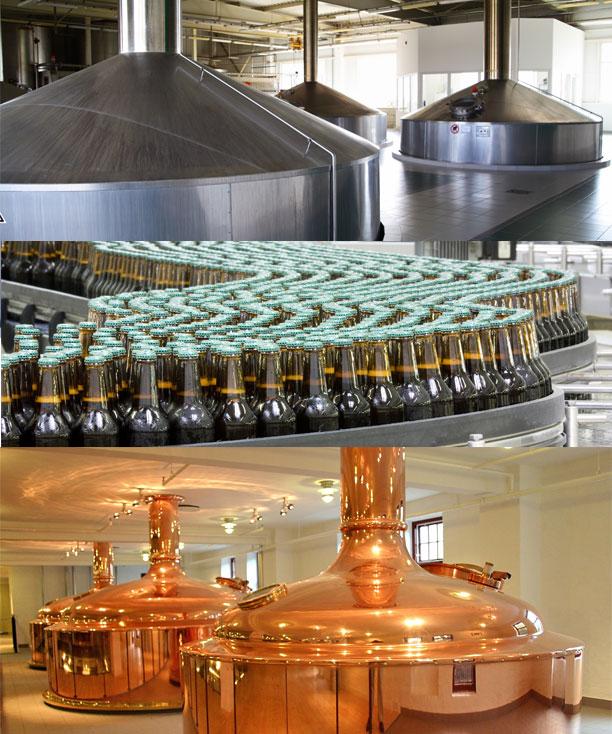 iesen Nutrition bioxy breweries