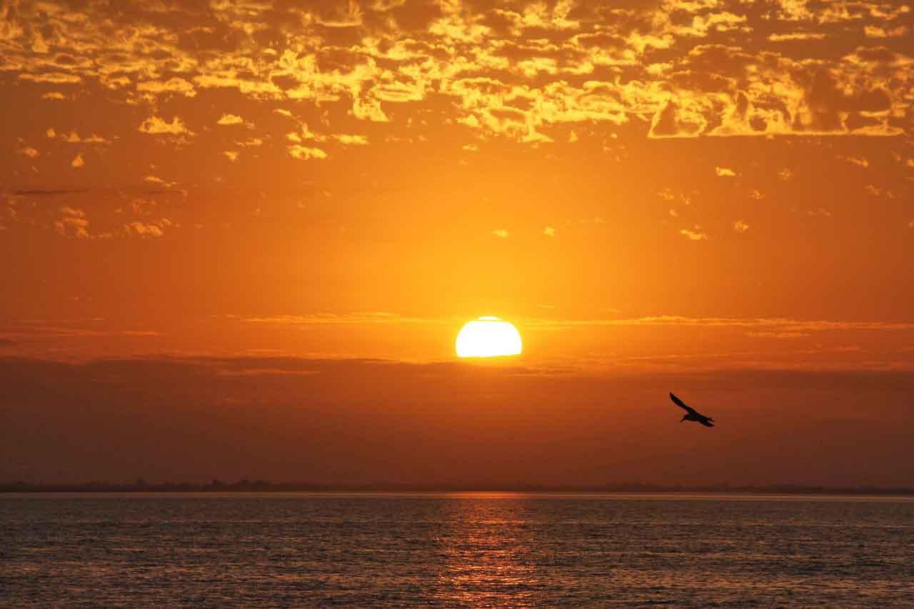sun-raise-1179442_1280.jpg