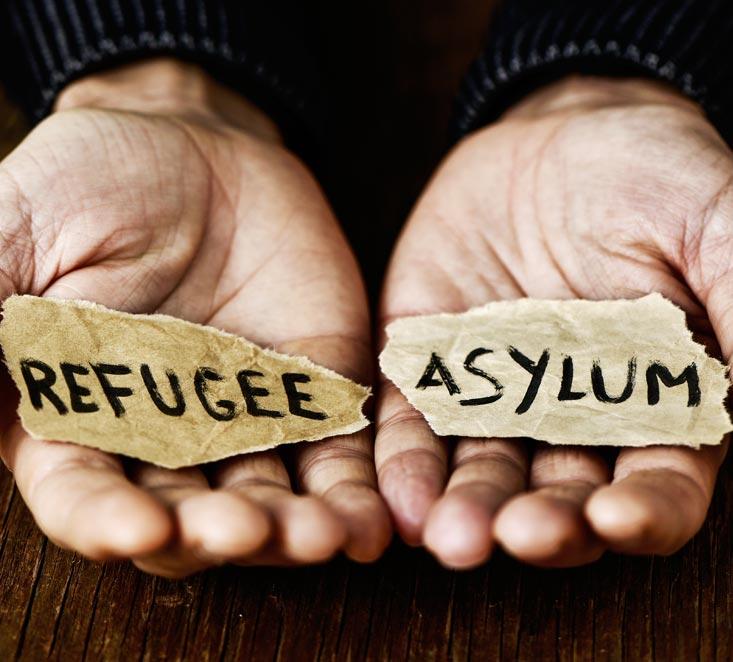 Best Asylum Lawyer in New York - Berd & Klauss, PLLC