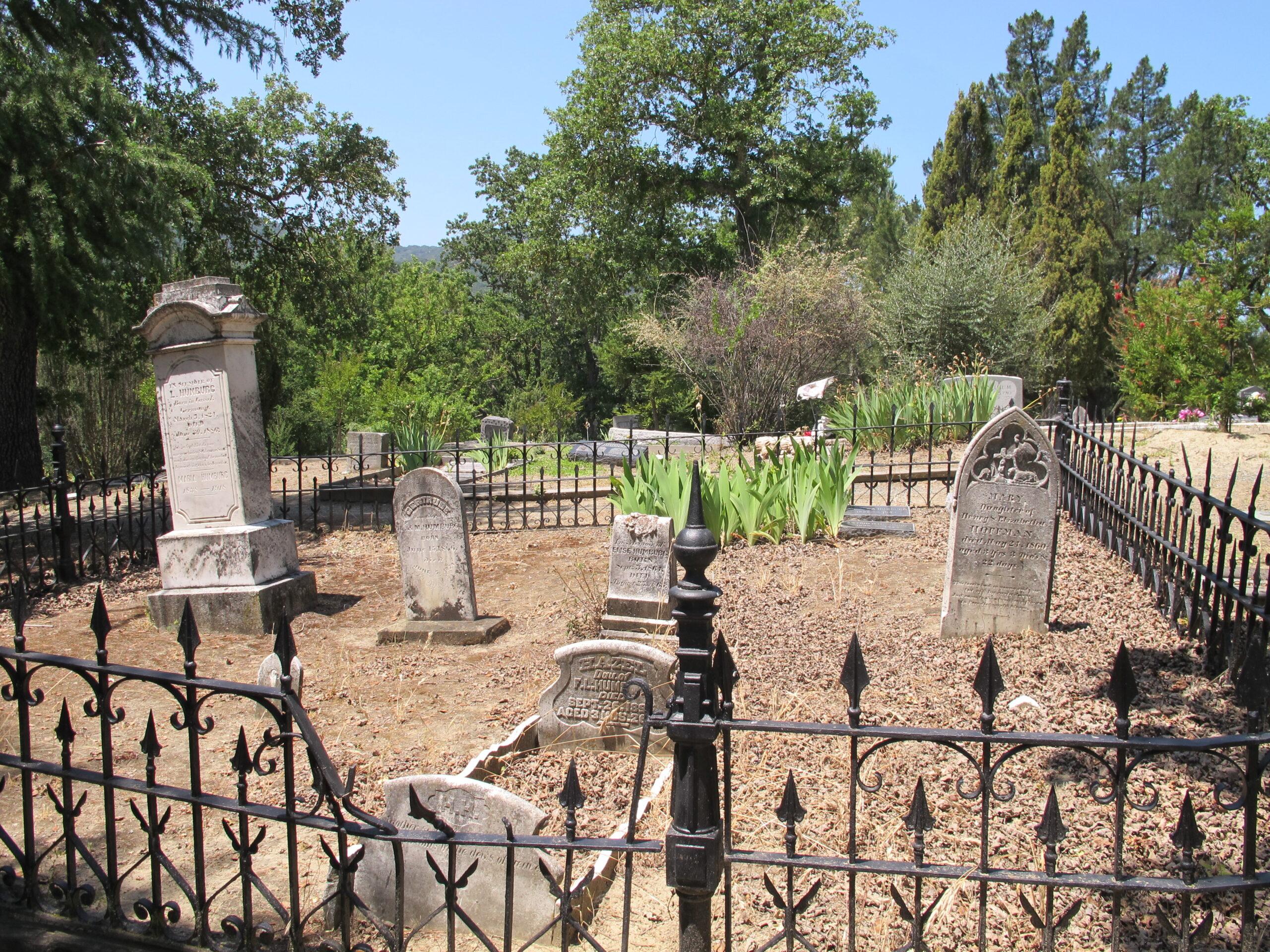 Humburg Gravesite at Alamo Cemetery