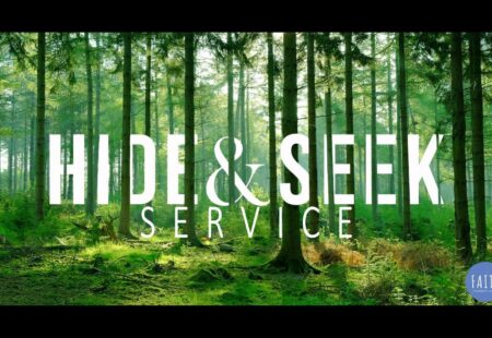 Hide & Seek: Service