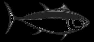 Fish_Small