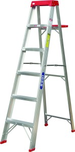An image of a metal ladder