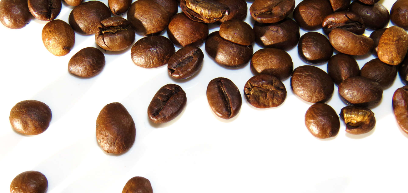 Coffee beans falling over a white backdrop in a beautifully organized fashion