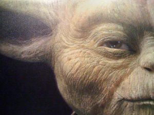 A close up on the left half of Jedi Yoda's face