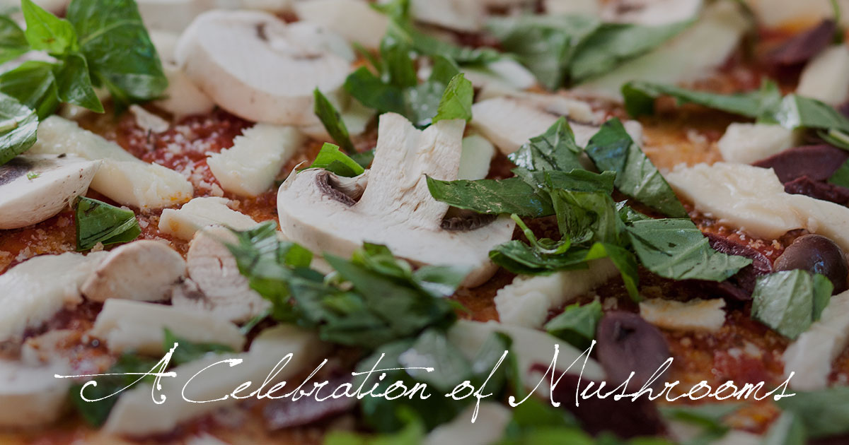 A Celebration of Mushrooms