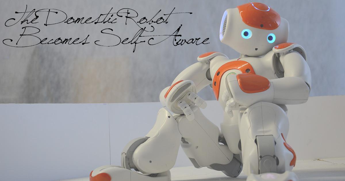 The Domestic Robot Becomes Self-Aware