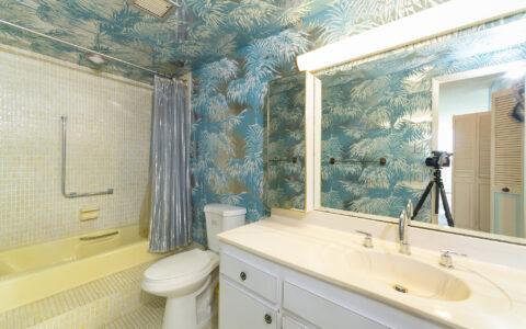 Old bathroom update