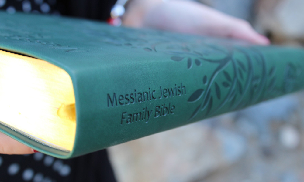 Messiah  – By Fanny Levin