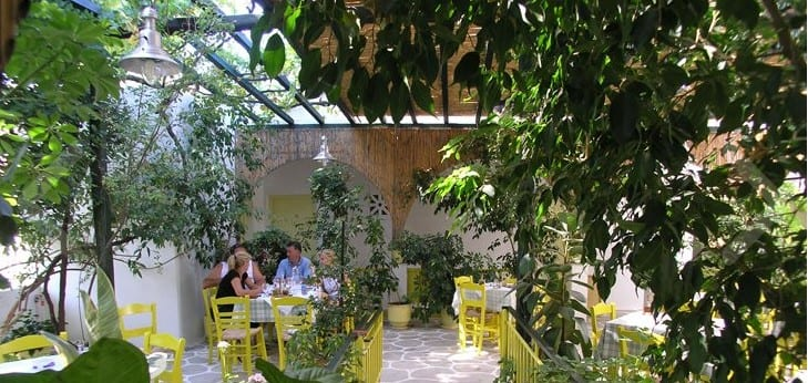 The best restaurants in Greece - A meal beneath the lemon & olive trees