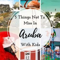 5 Things Not to Miss in Aruba With Kids - Must see and do in Aruba when on a family vacation. Top rated attractions, things to do.