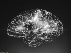 An image of the brain outlined in silver with light areas inside representing activity.