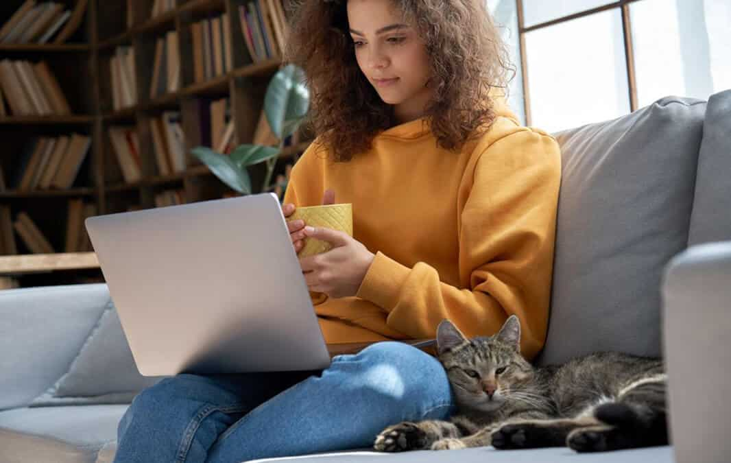 Cat sitting on couch with owner on her laptop