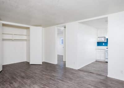 Large closet space in empty living room