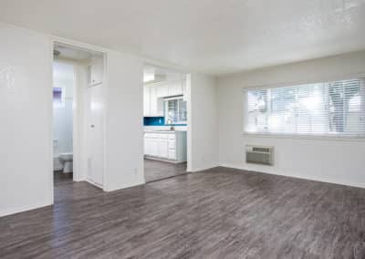 Wood-like flooring throughout empty apartment living room