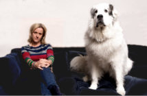 Jojo Moyes and her beloved BigDog, who considers the lead to be an affront to her dignity and recall to be optional