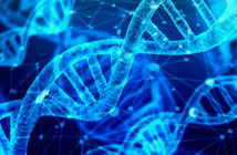 DNA, does it make us who we are?