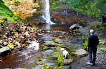 Earliest amphibian tracks found on stone museum ignored for years. The track was spotted 40 years ago near Hardraw Force waterfall in the Yorkshire Dales. Image Credit: Alamy, 2019.