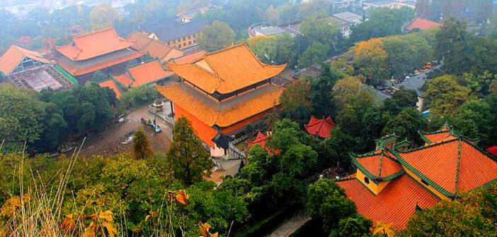 Nine days in Wuhan and Corona-virus.