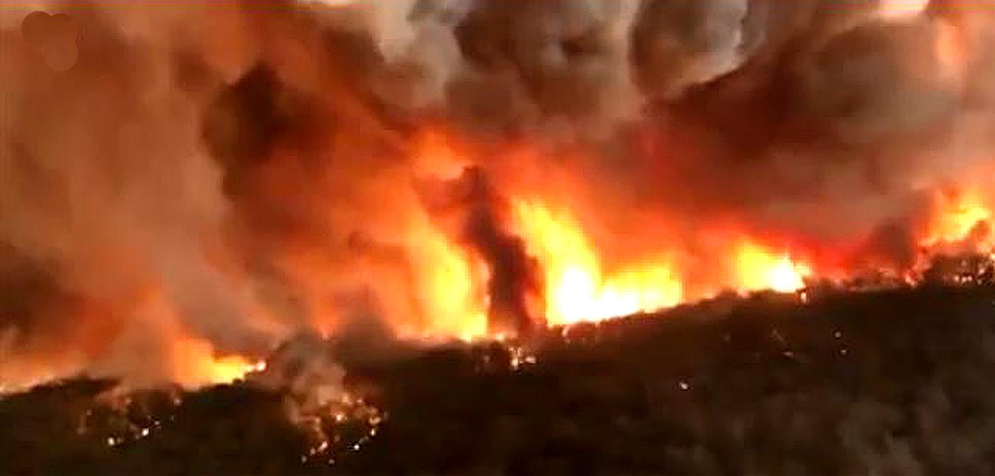 Blaze in South Australia fuels fears.