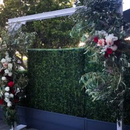 White Arch with olive leaves