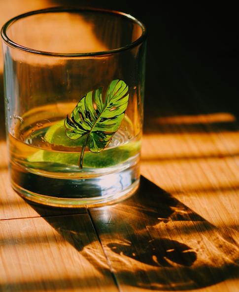 ti-punch-recipe-martinique-darley-1776632