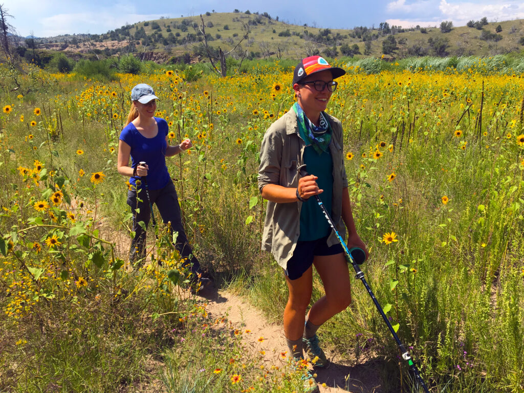 Hiking amid sunflowers along the Continental Divide Trail in the Gila National Forest in New Mexico
