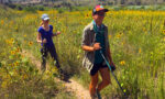Hiking the Continental Divide Trail in New Mexico for Travels with Darley
