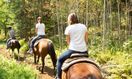 Horseback Riding in Adirondacks