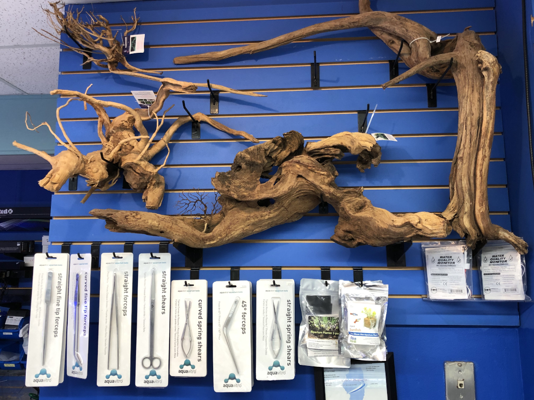 Spider Wood, Driftwood, and Aquascaping Tools on Blue Wall