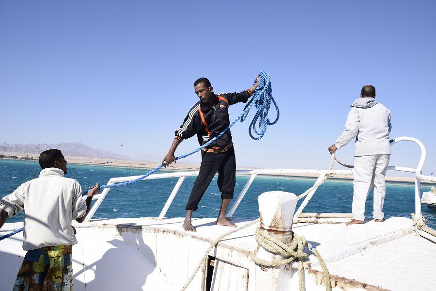 Daily Kite Safari in Soma Bay