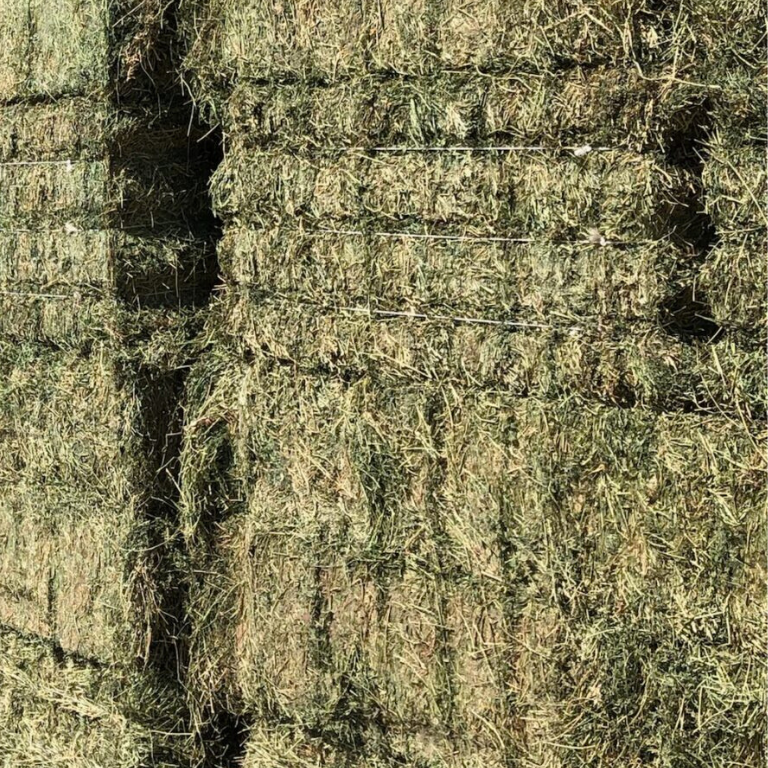 Cow Hay from Triple Crown Hay in Gilbert Arizona