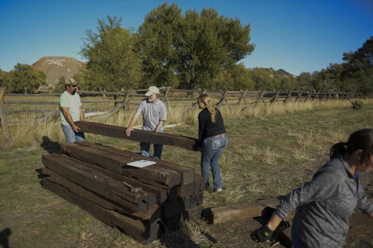thumbnail__DSC8611 Railroad Ties for permimeter of Paly park area