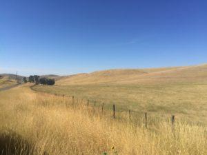 Eclipse location - Weiser Idaho